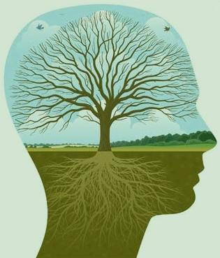 psychoterapie-poradenství-brno-psychoterapeut-brno
